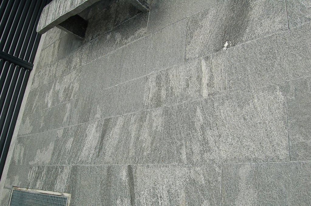 DSC-0163.jpg